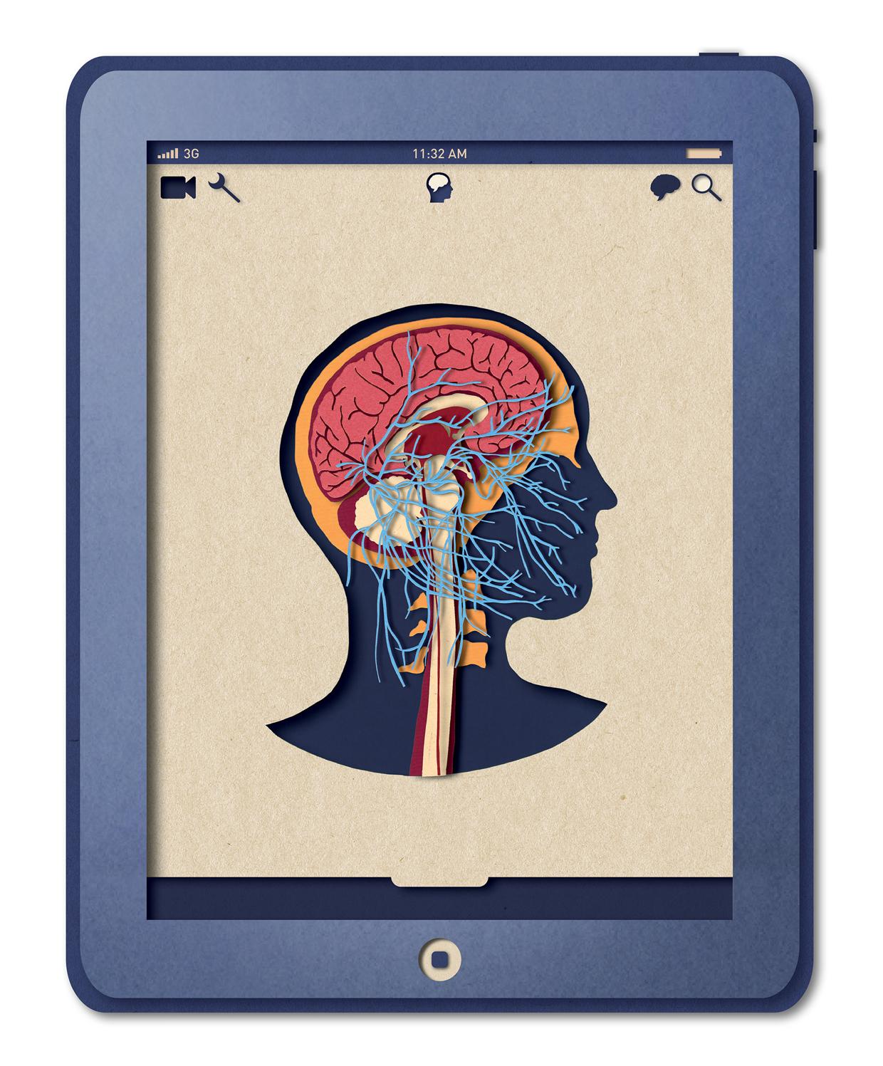 Biotud App - Nervous System / Varga Natalia (5)