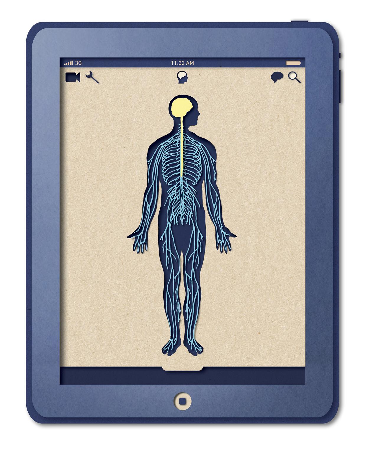 Biotud App - Nervous System / Varga Natalia (11)
