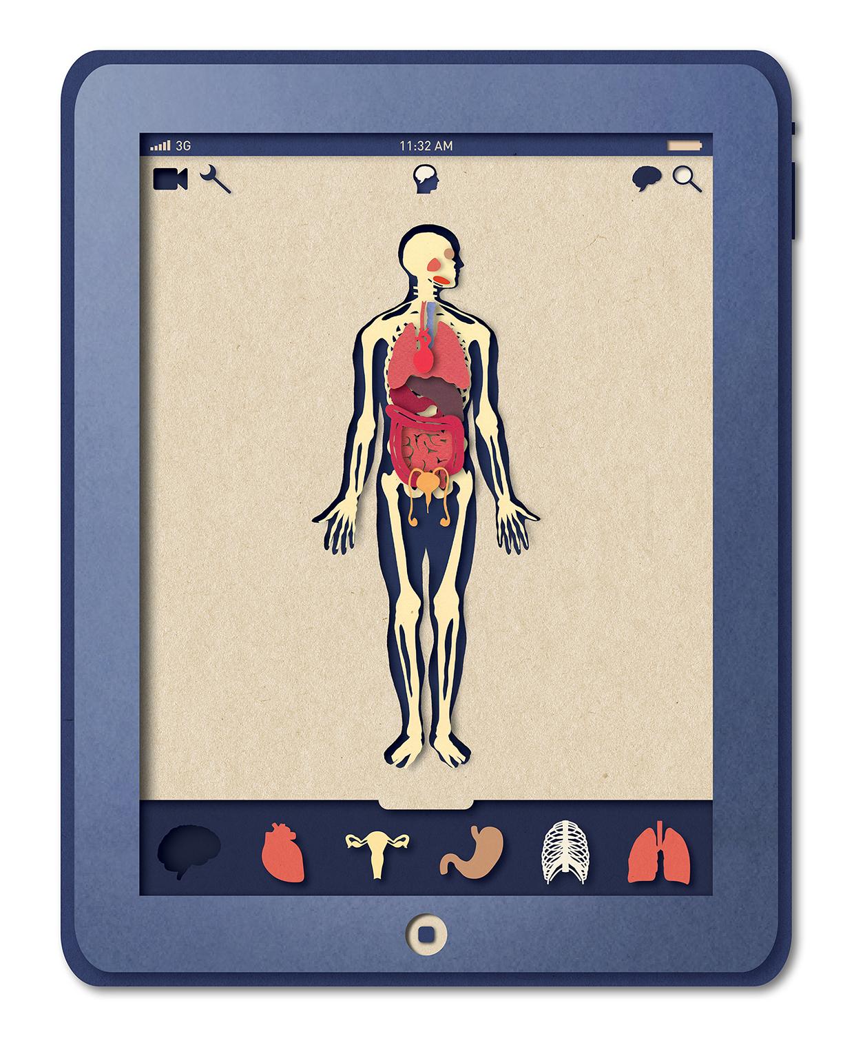 Biotud App - Nervous System / Varga Natalia (9)