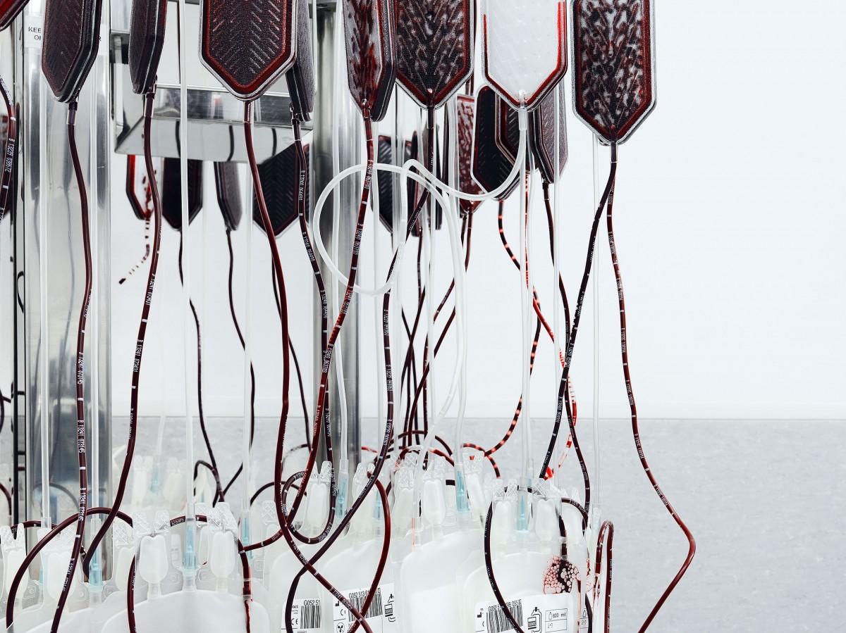 Blood / Greg White (5)