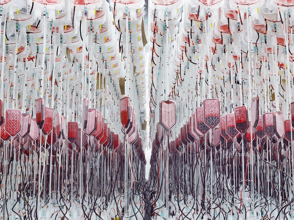 Blood / Greg White (3)