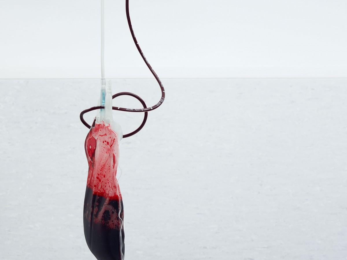 Blood / Greg White (13)