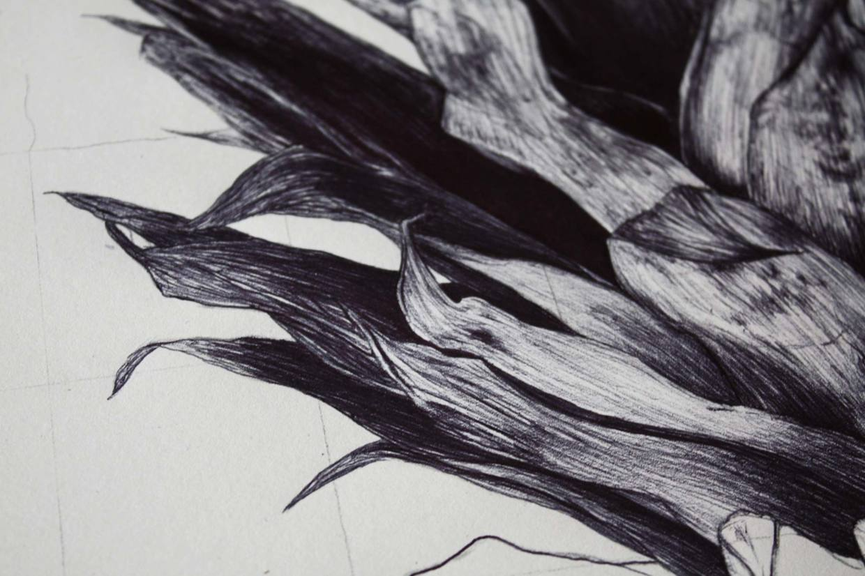 Crananas / Remi Andron (5)