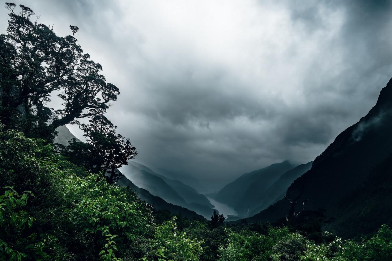 Cuno von Hahn newzealand