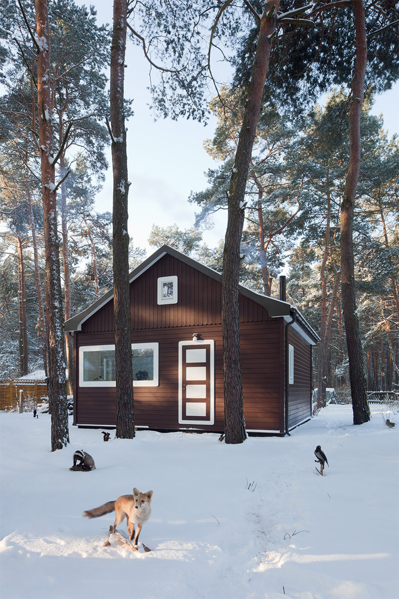Forest House / Atelier St (7)