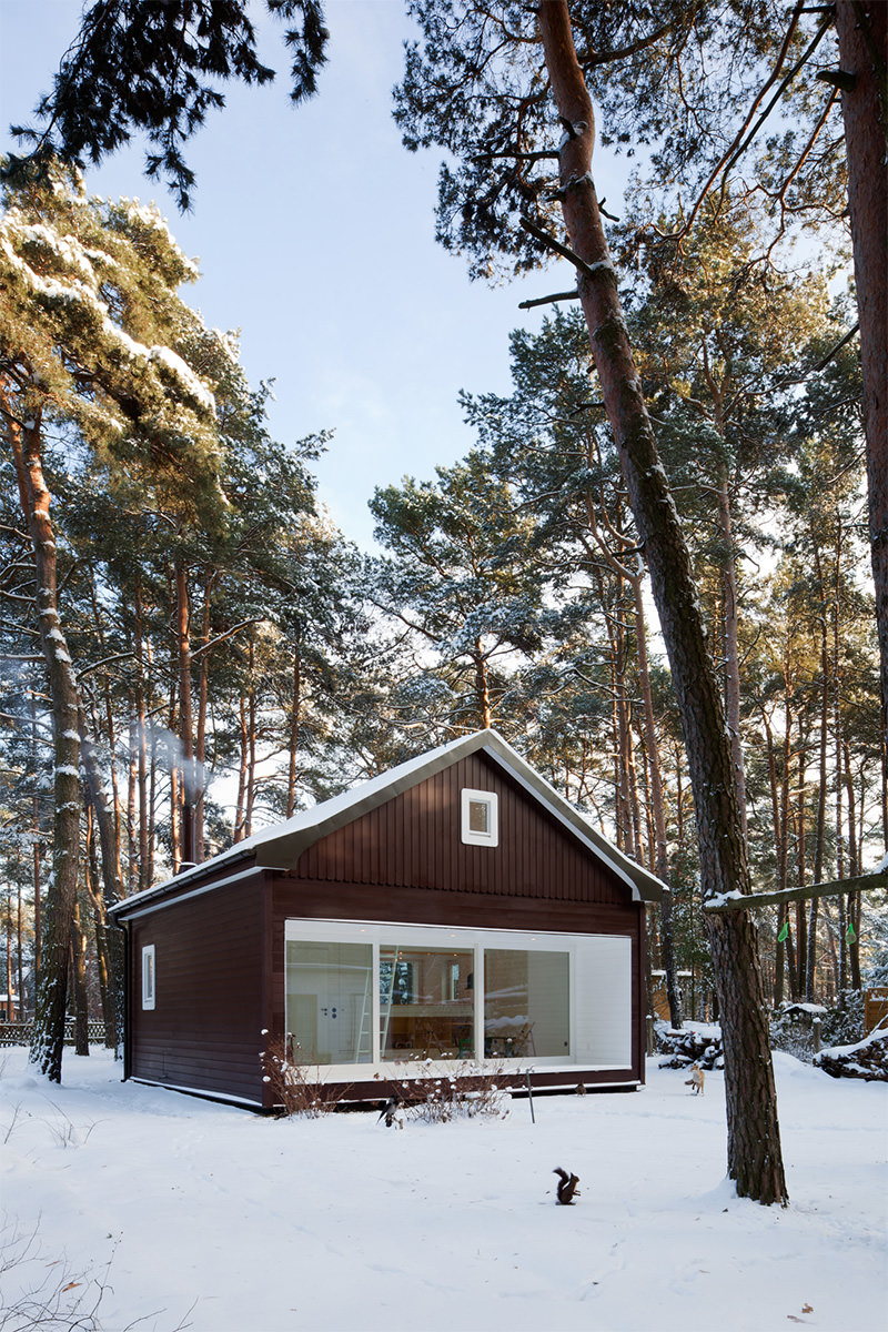 Forest House / Atelier St (6)