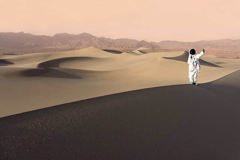 Greetings From Mars / Julien Mauve (12)
