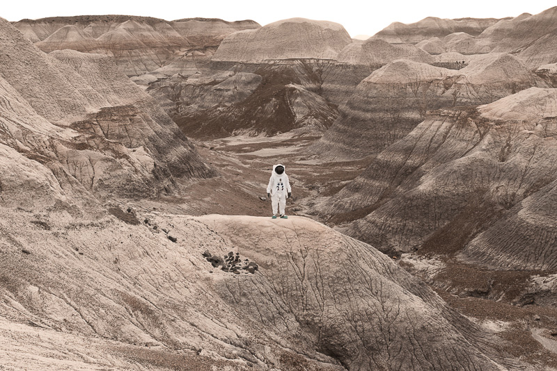 Greetings From Mars / Julien Mauve (11)