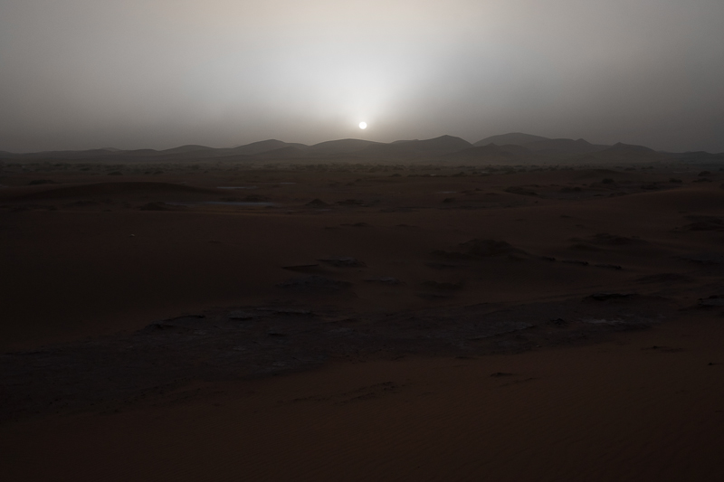 Greetings From Mars / Julien Mauve (2)