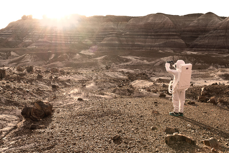 Greetings From Mars / Julien Mauve (17)
