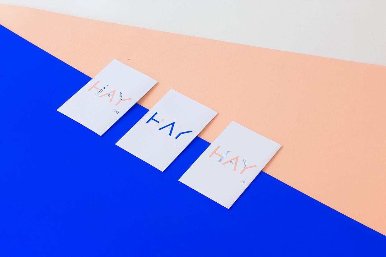 HAY Identity / Andrea Eedes (12)