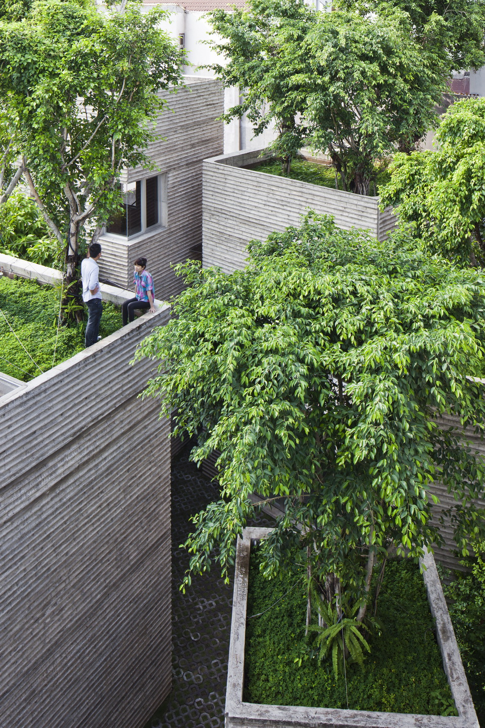 House for Trees / Vo Trong Nghia Architects (5)