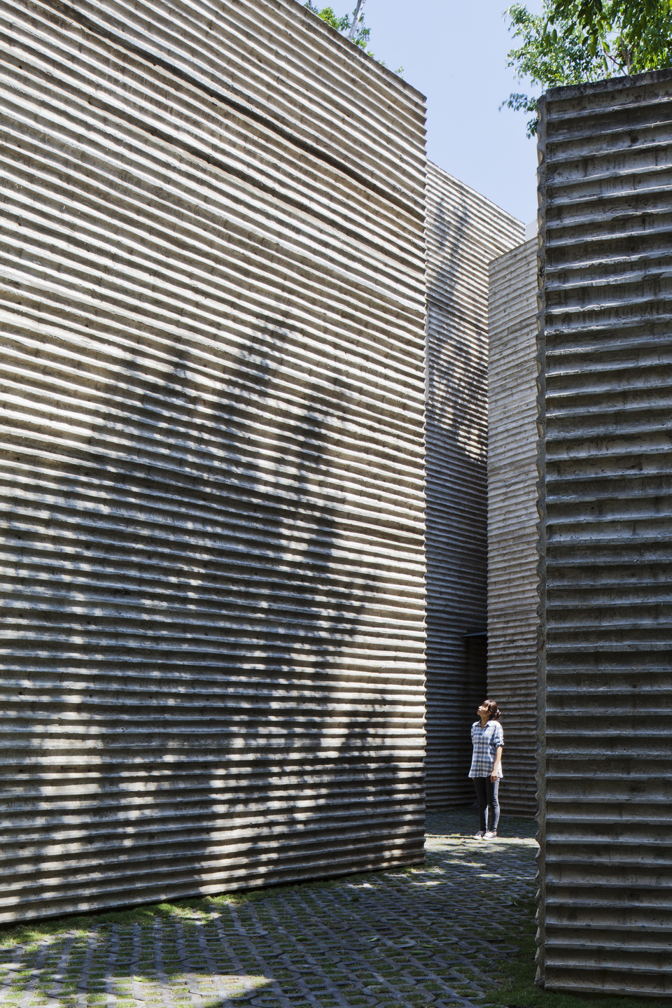 House for Trees / Vo Trong Nghia Architects (4)