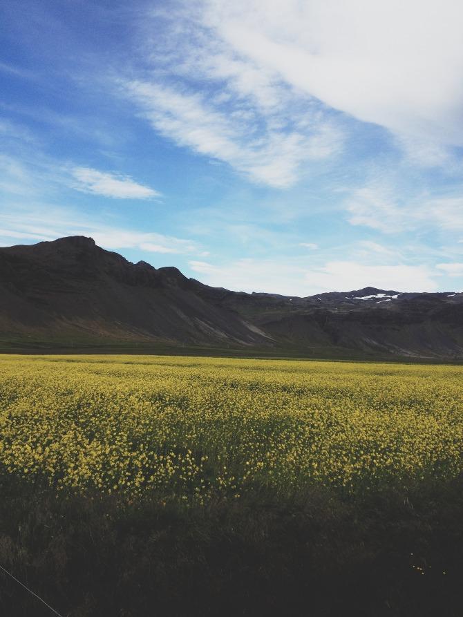 Iceland-Andrew_Gallo-15