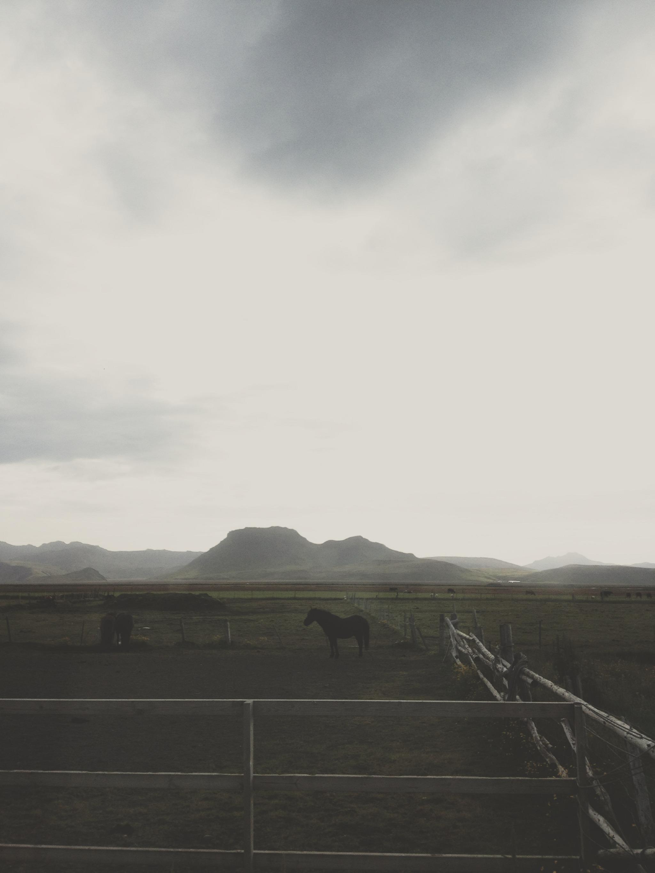 Iceland-Andrew_Gallo-10