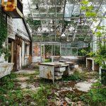 Asylums / Jeremy Harris