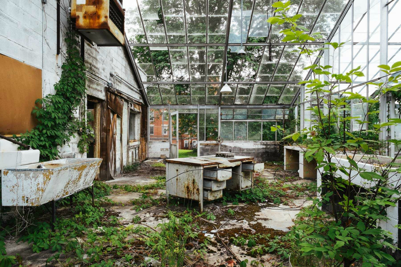 Asylums / Jeremy Harris (6)