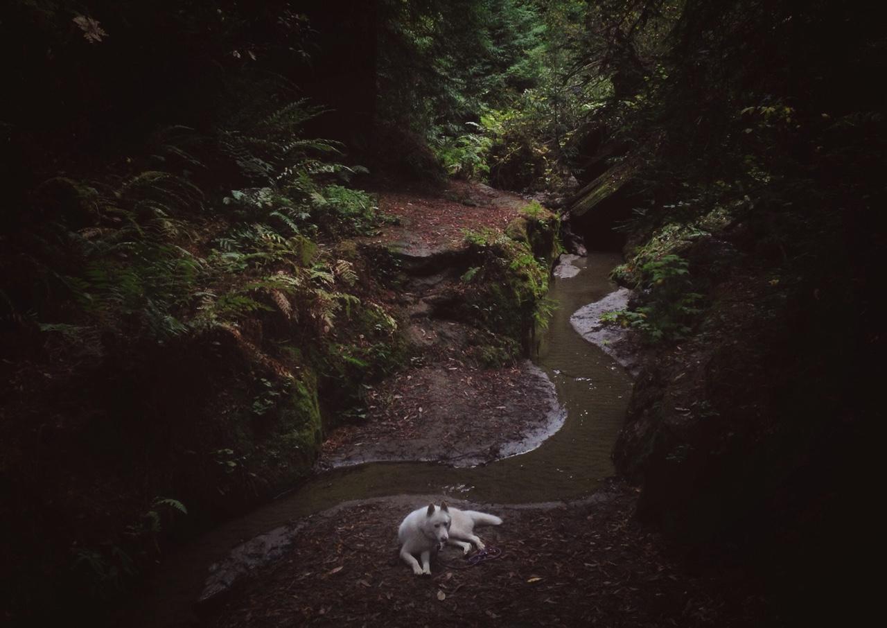 John & Wolf / John Stortz (7)