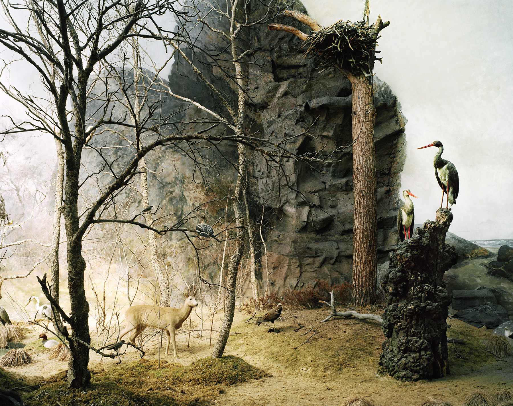 Landscape 5 / Felix Odell (13)