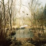 Landscape 5 / Felix Odell