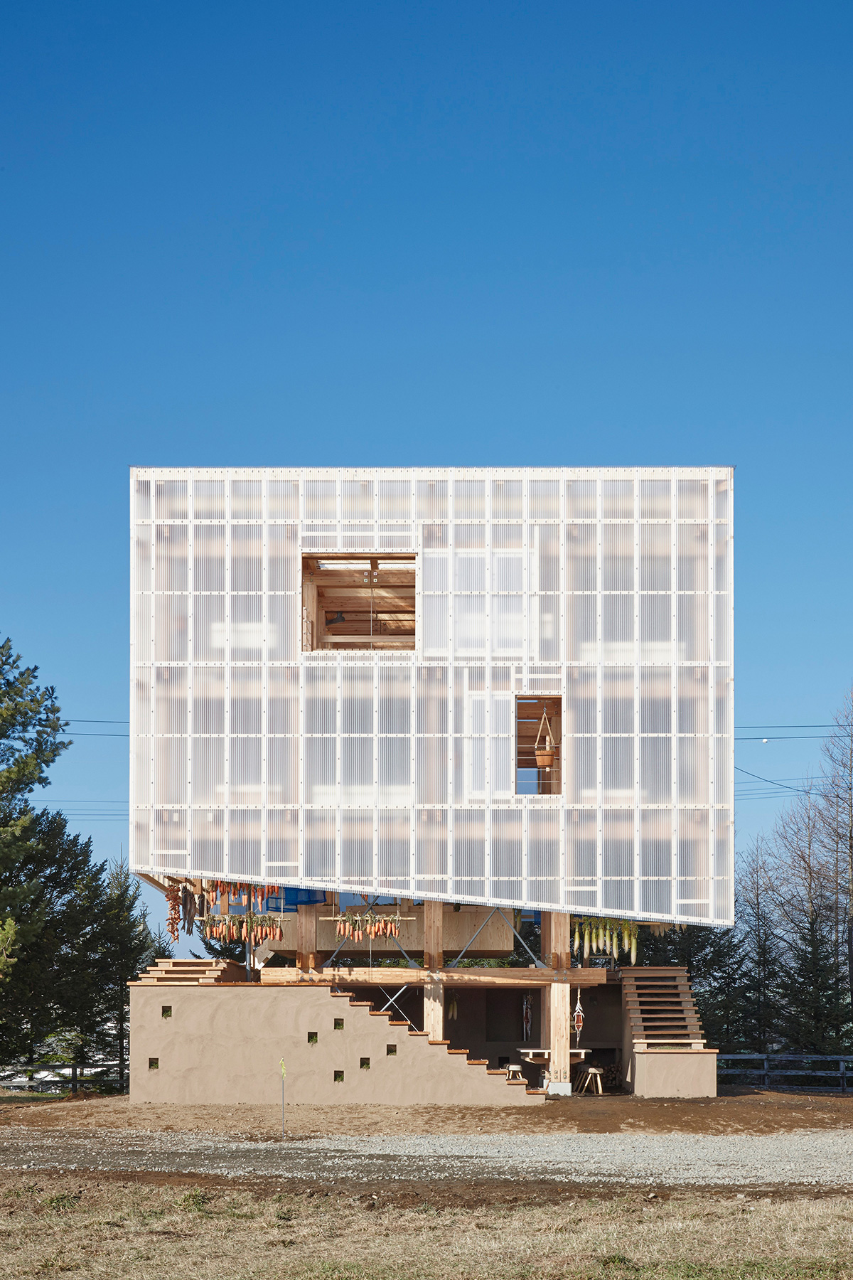 Nest We Grow / College of Environmental Design & Kengo Kuma & Associates (41)