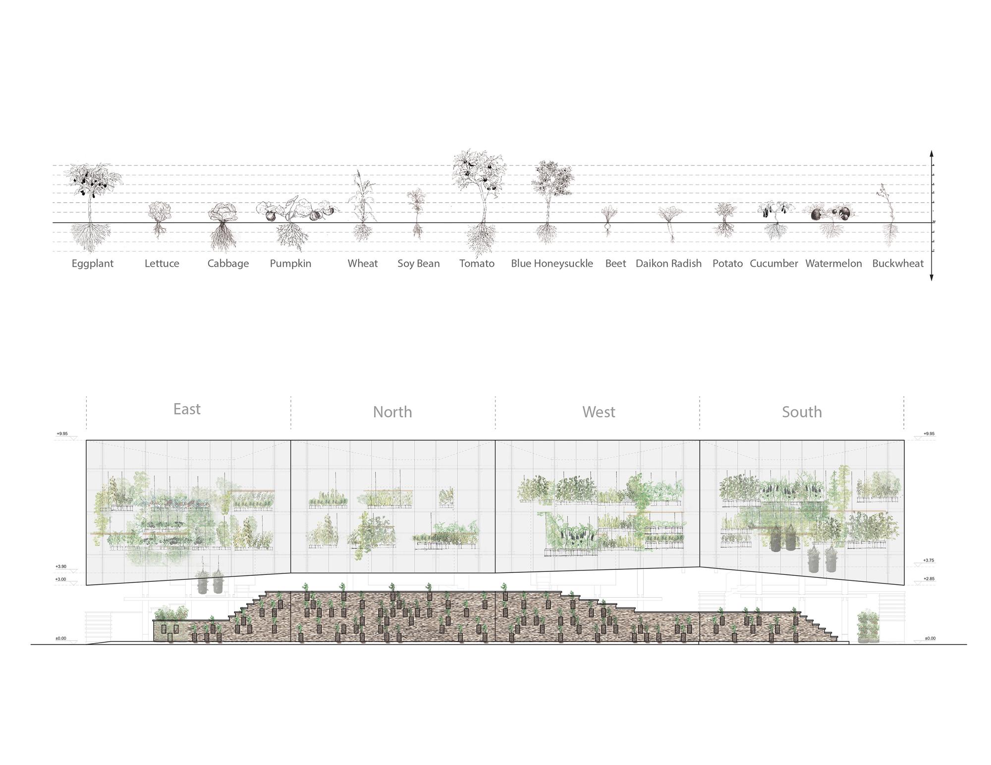 Nest We Grow / College of Environmental Design & Kengo Kuma & Associates (19)