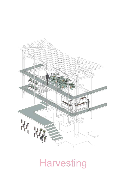 Nest We Grow / College of Environmental Design & Kengo Kuma & Associates (11)
