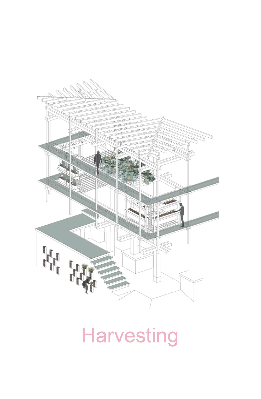 Nest We Grow / College of Environmental Design & Kengo Kuma & Associates (10)