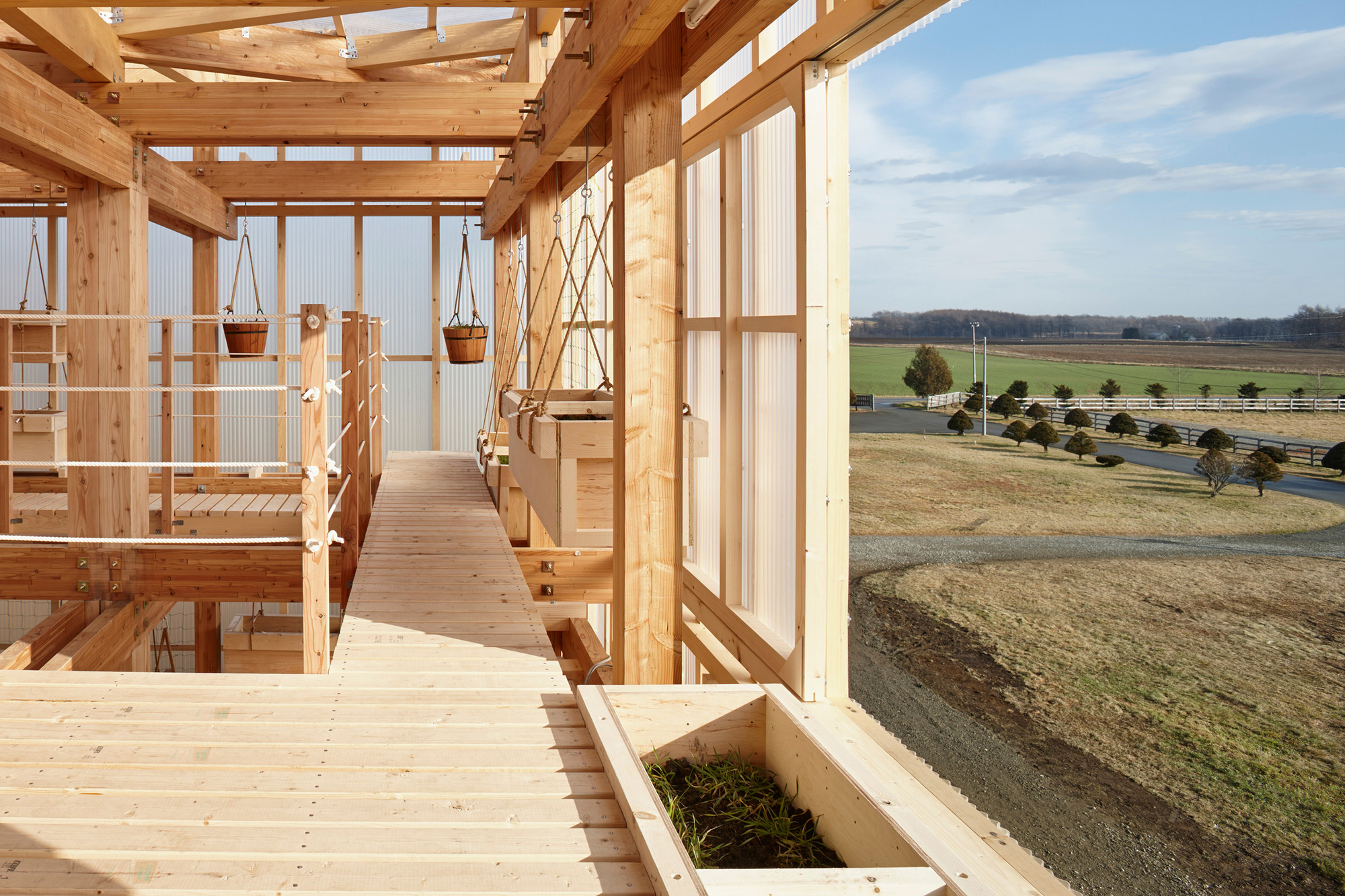 Nest We Grow / College of Environmental Design & Kengo Kuma & Associates (38)