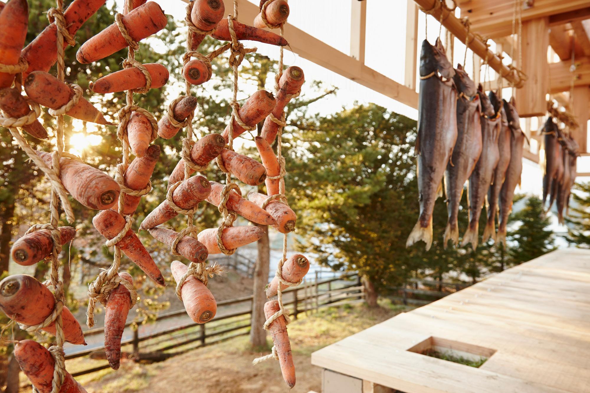 Nest We Grow / College of Environmental Design & Kengo Kuma & Associates (35)