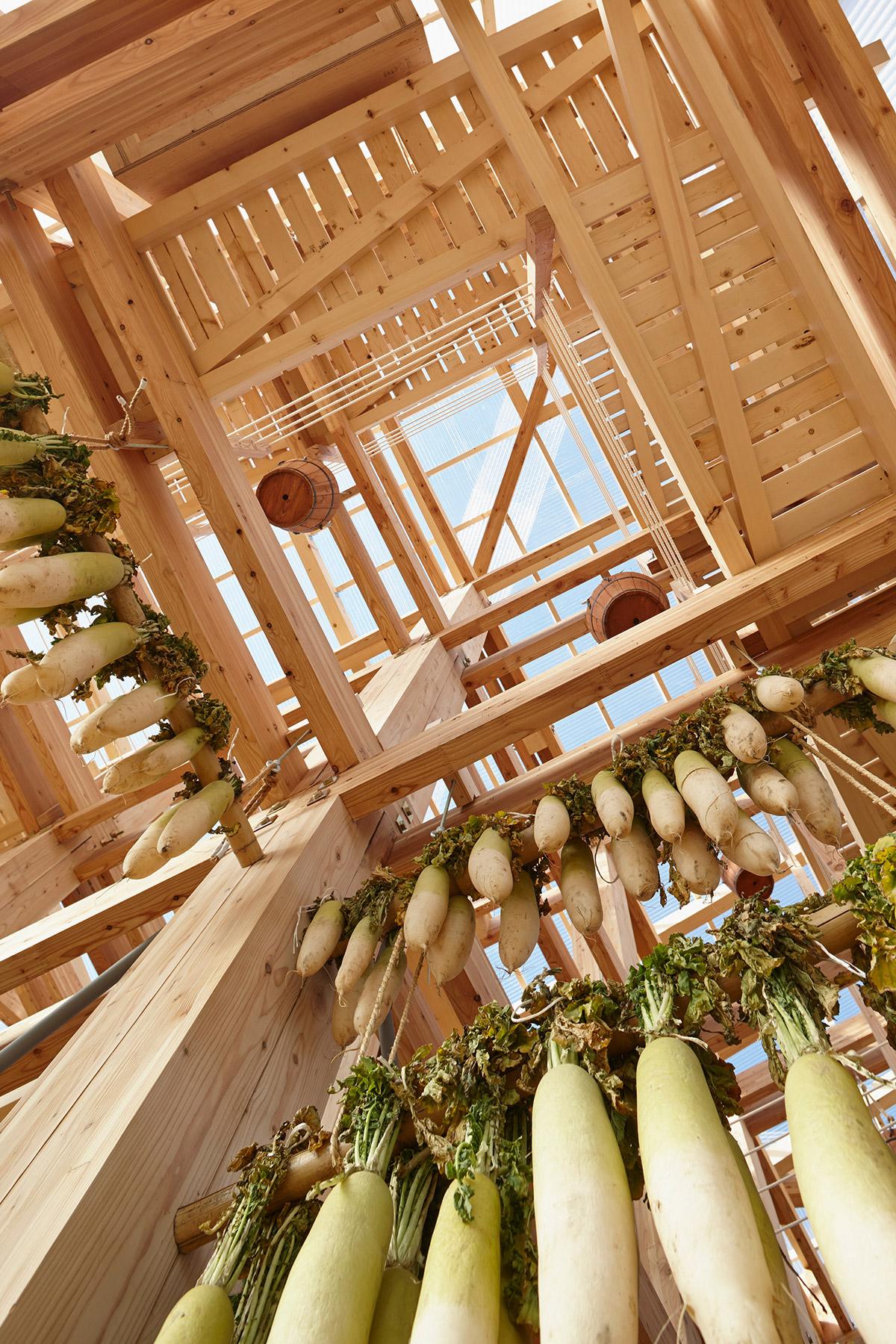Nest We Grow / College of Environmental Design & Kengo Kuma & Associates (33)