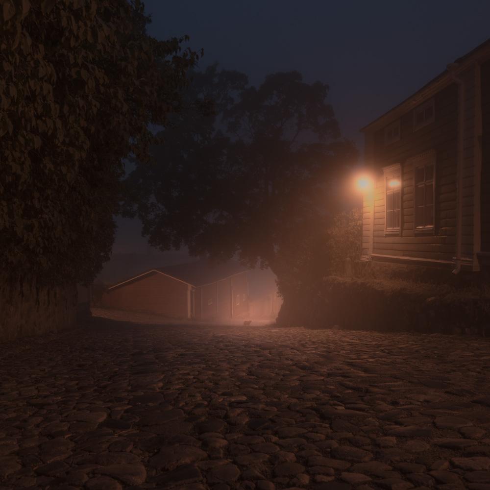 Night_Annimals-Mikko_Lagerstedt-5.jpg