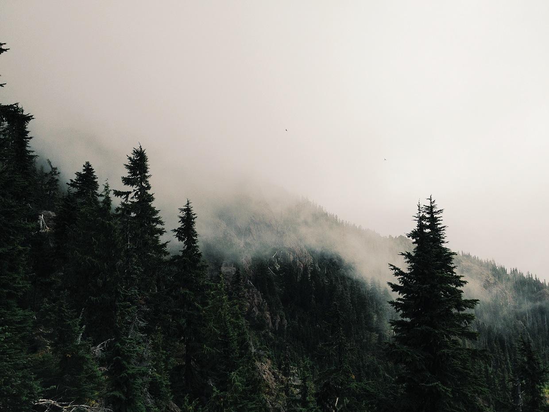 Project Fog / Joram Nathanael (17)