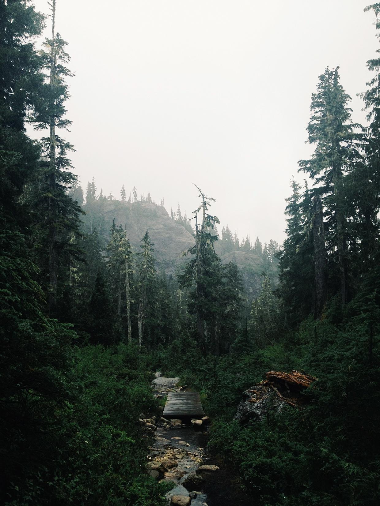 Project Fog / Joram Nathanael (26)