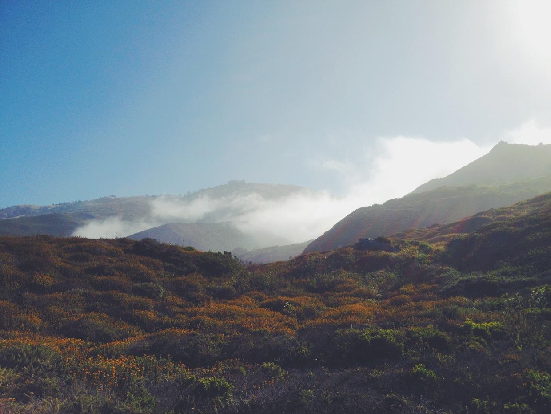 Project Fog / Joram Nathanael (7)
