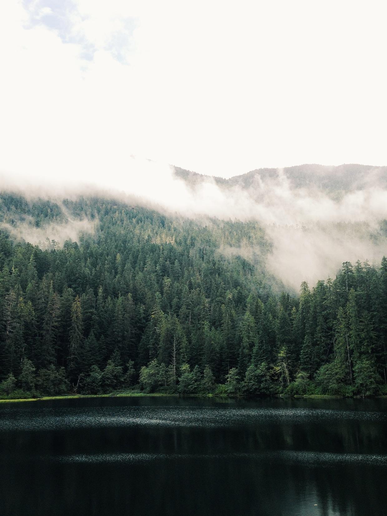 Project Fog / Joram Nathanael (4)