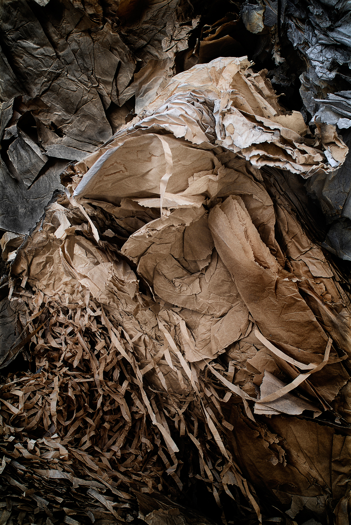 Recycled Paper / Gonzalo Sanguinetti (7)