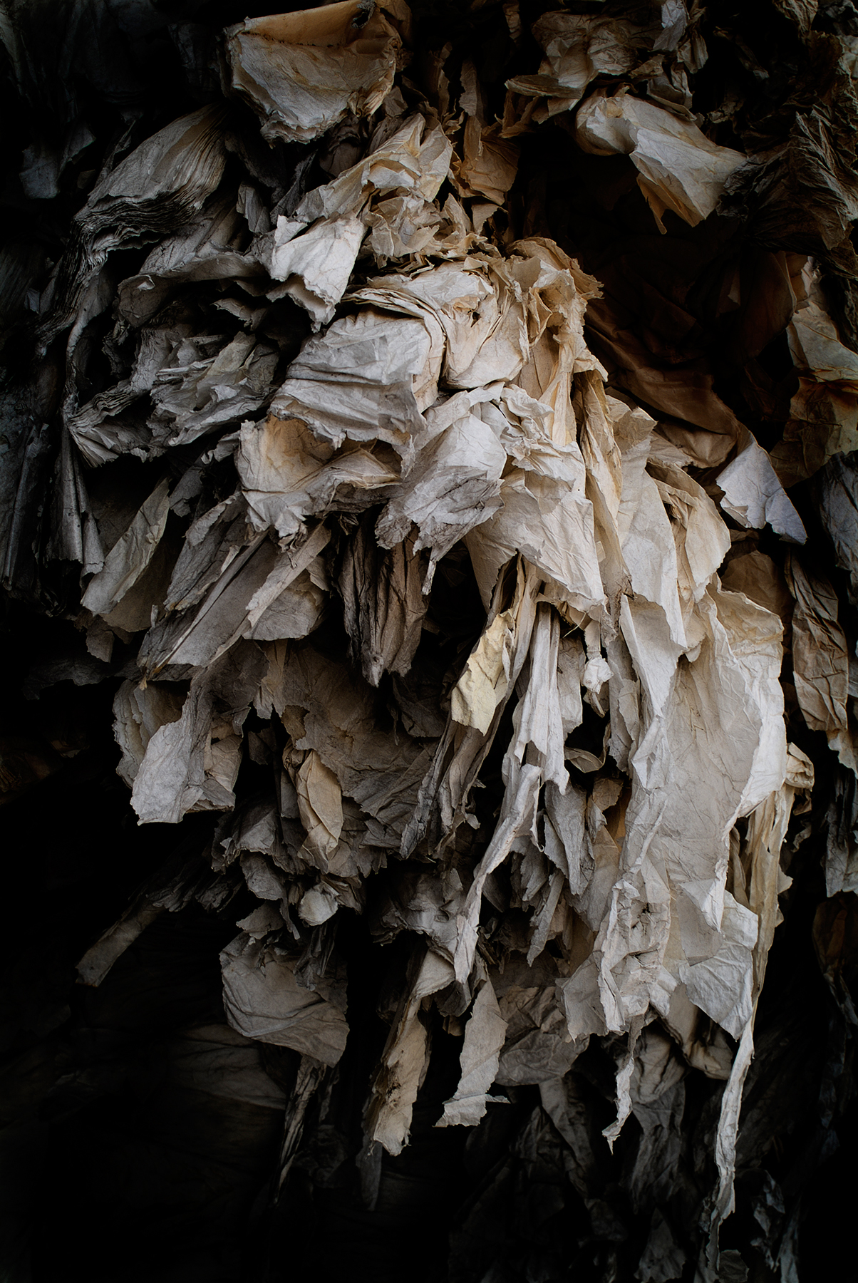 Recycled Paper / Gonzalo Sanguinetti (5)