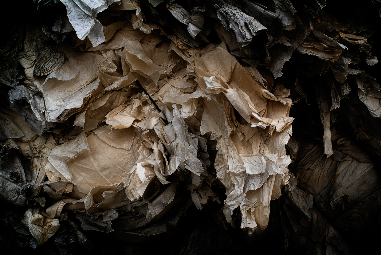 Recycled Paper / Gonzalo Sanguinetti (4)