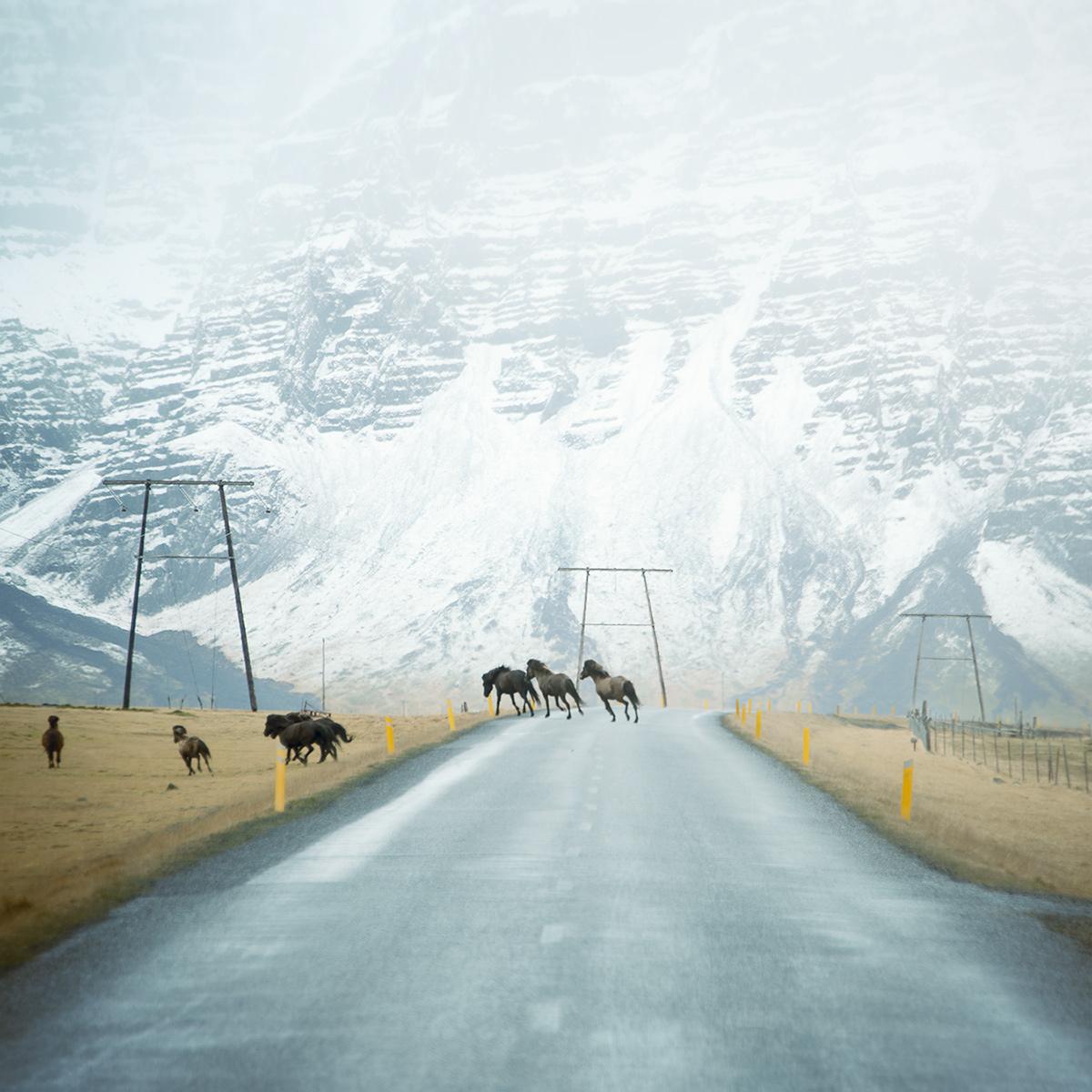 Roads-Andy-Lee-14.jpg