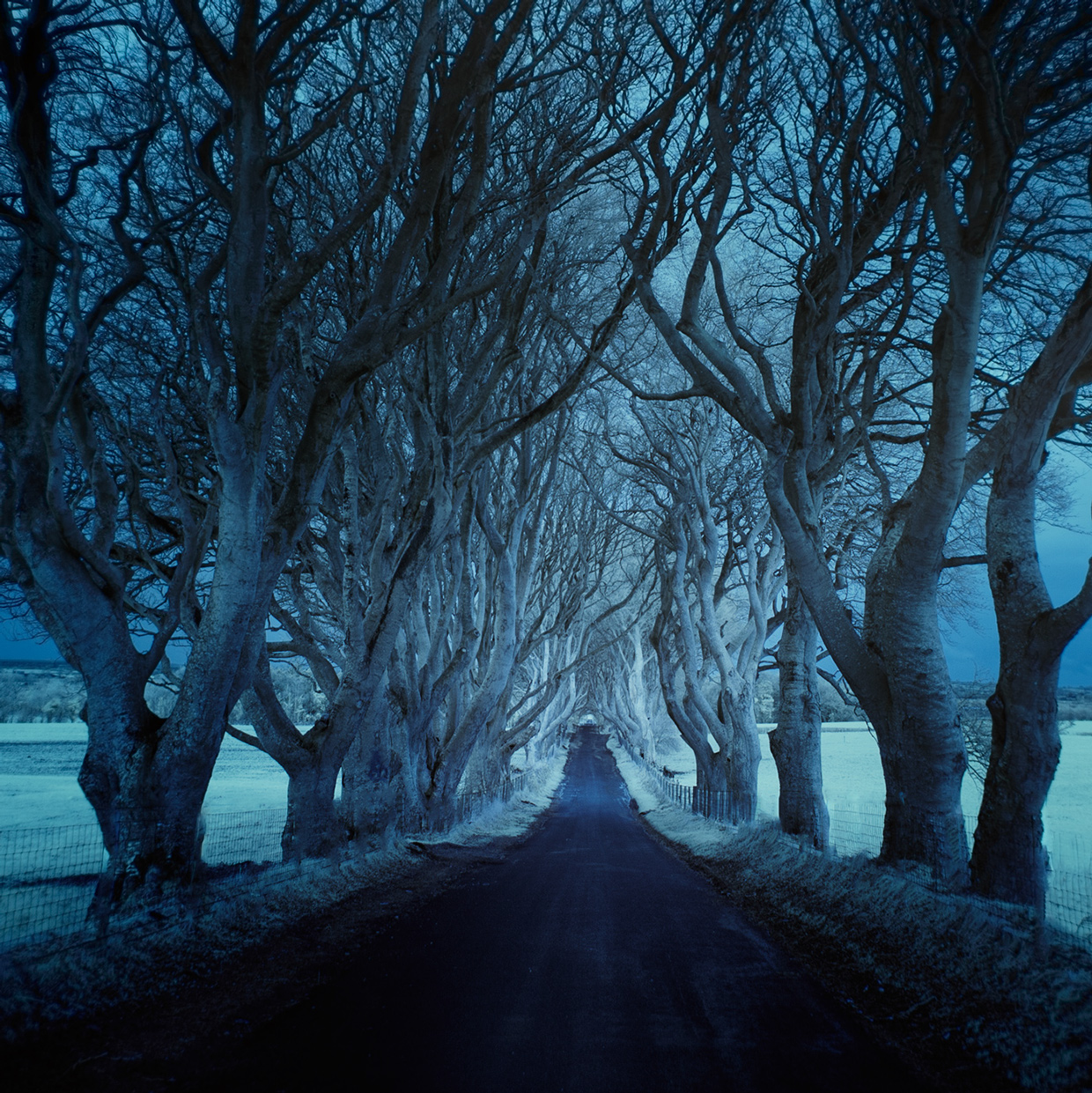 Roads / Andy Lee (5)
