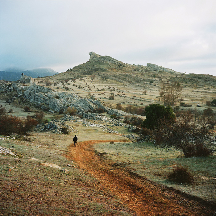 Scrublands – In Progress / Antoine Bruy