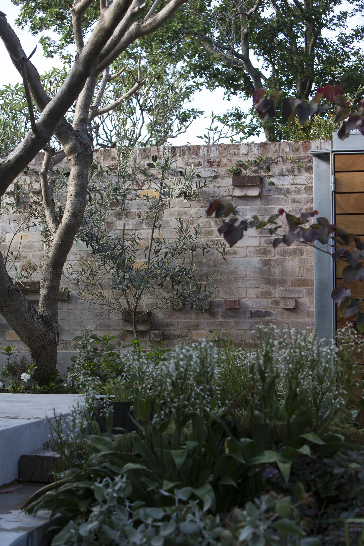 The Garden Room / Welsh+Major (7)
