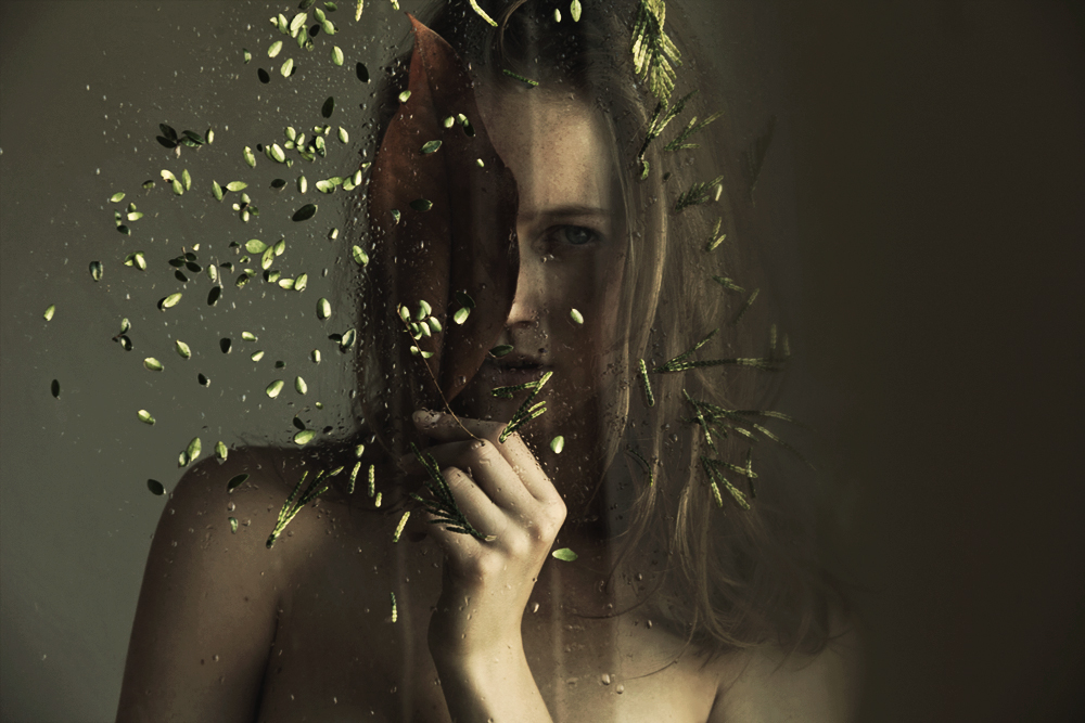 Through The Glass 1 / Marta Bevacqua (8)