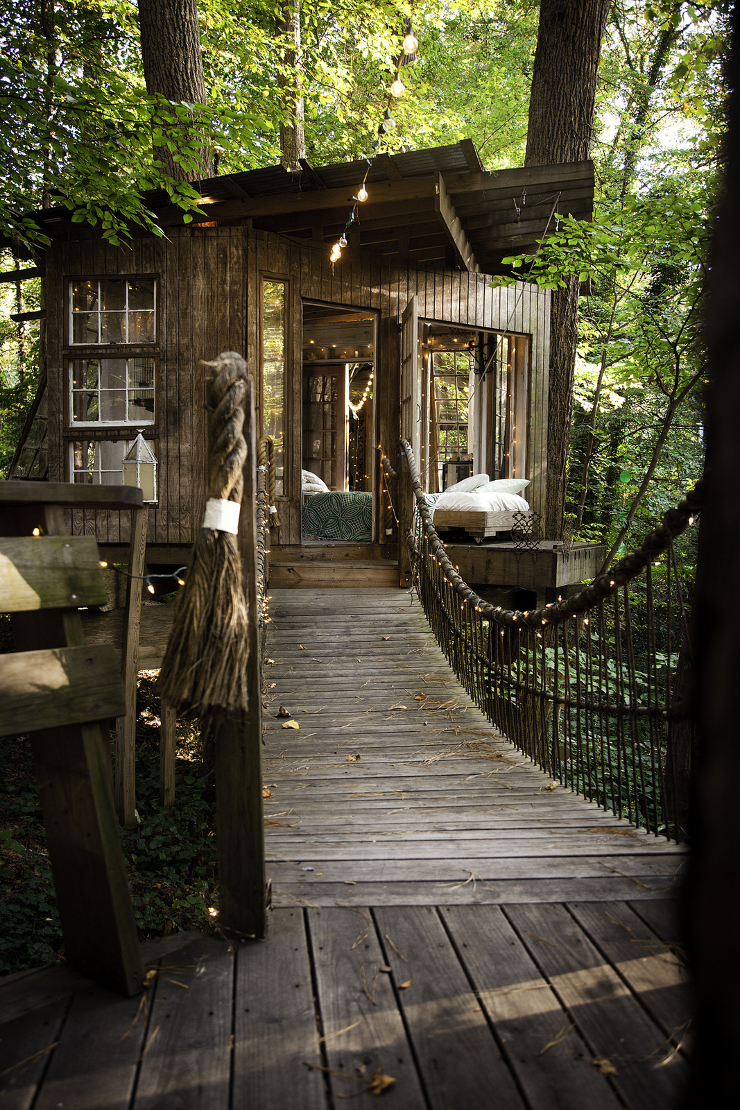Treehouses / Peter Bahouth (2)