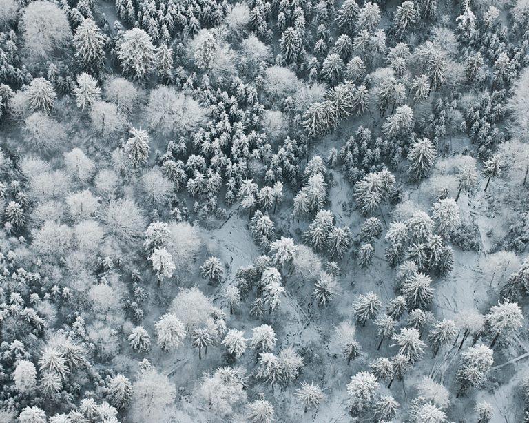 Winter Aerials / Bernhard Lang