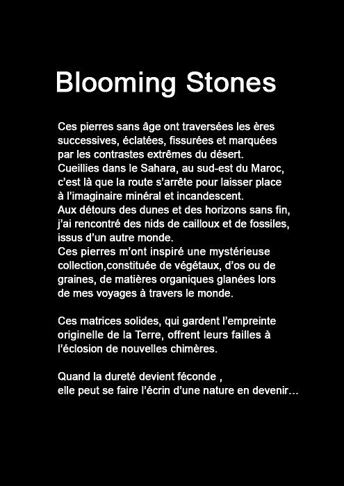 blooming-stones-virginie-sueres-17.jpg