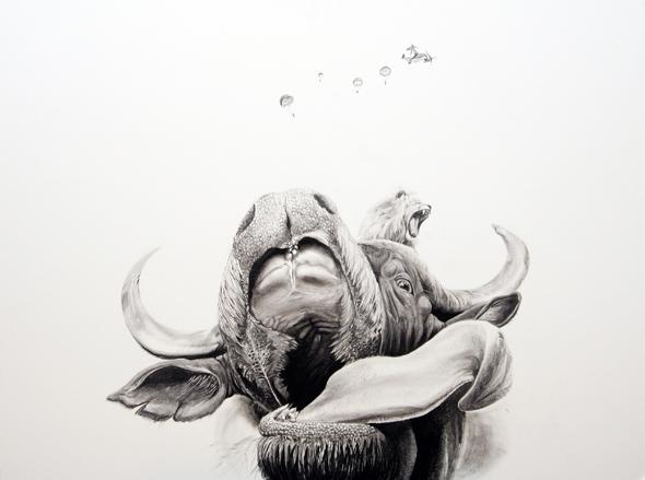 Illustrations / Kalanda Martin