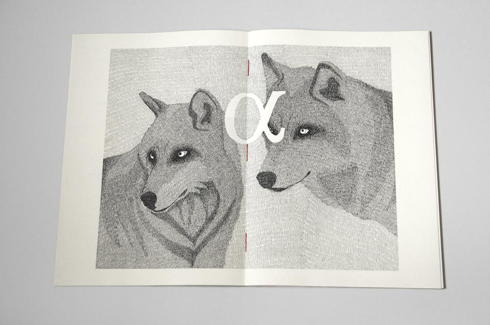 La Disparition Des Loups / Aurélie Mennessier