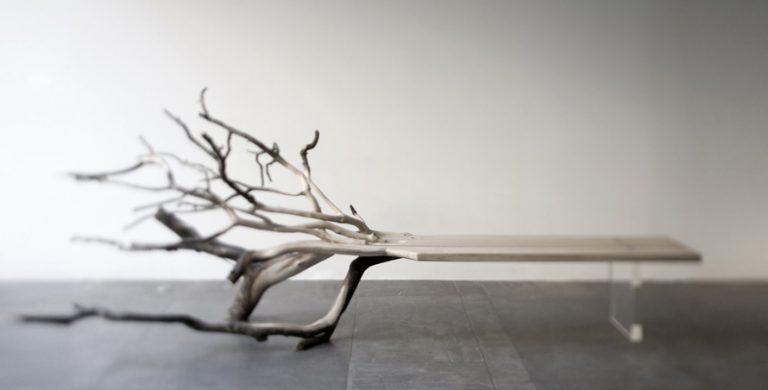 Fallen Tree / Benjamin Graindorge